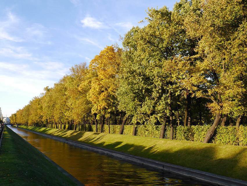 осень в Летнем саду