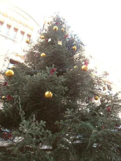 Новогодняя елка Барселоны