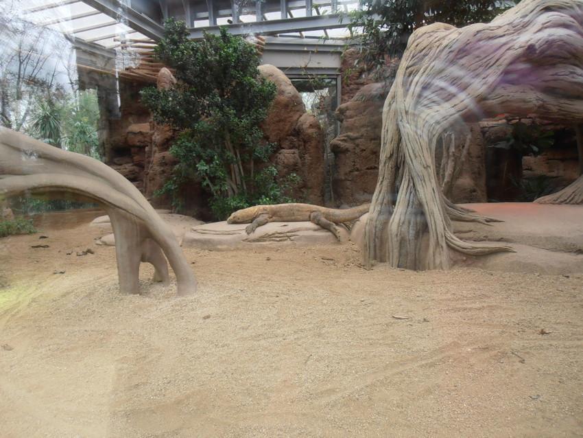Один из павильонов зоопарка