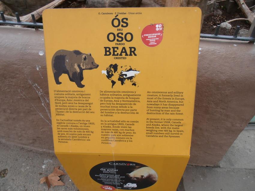 Осторожно, медведи!