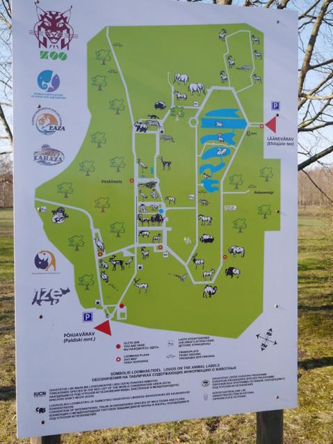 Карта Таллиннского зоопарка