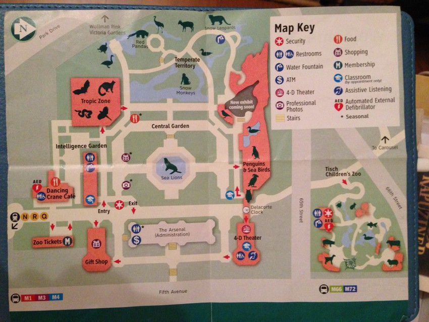 карта зоопарка Нью-Йорка