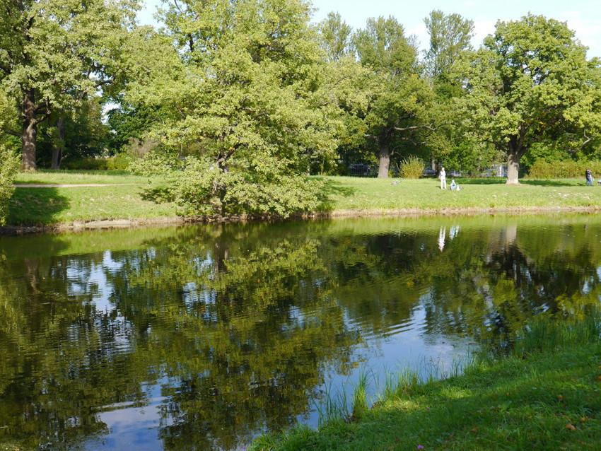 Озеро в Александровском парке