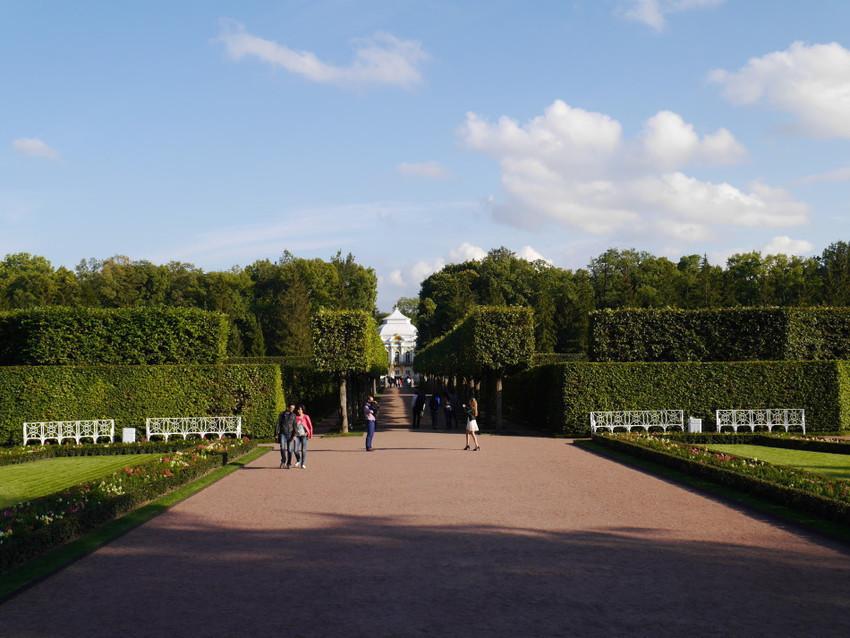 Геометрически точные формы парка