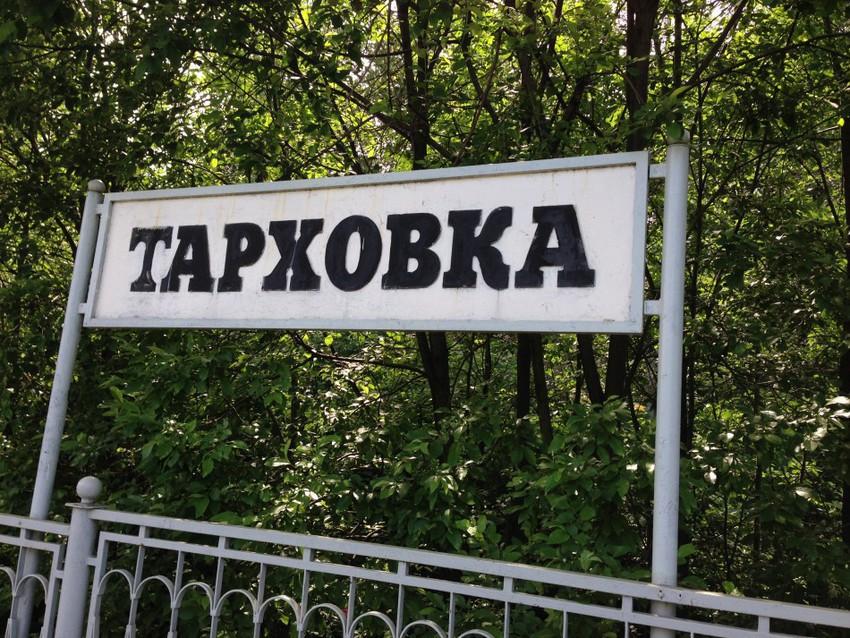 Станция Тарховка
