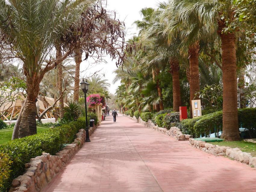 Египетские колорит