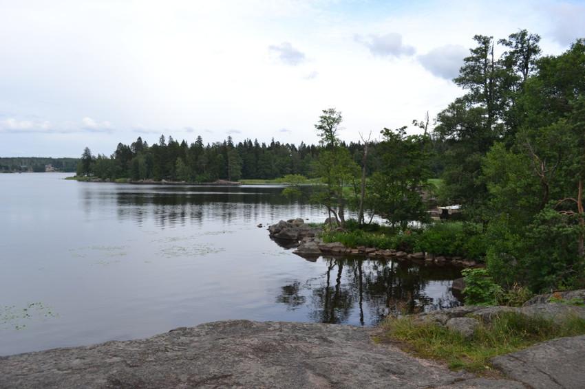 Финский залив с берегов парка