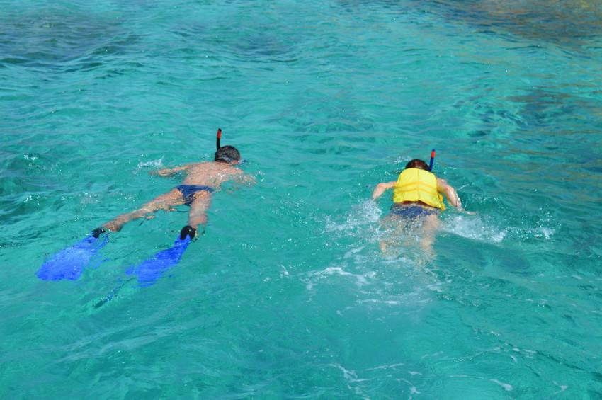 Сноркелинг в море