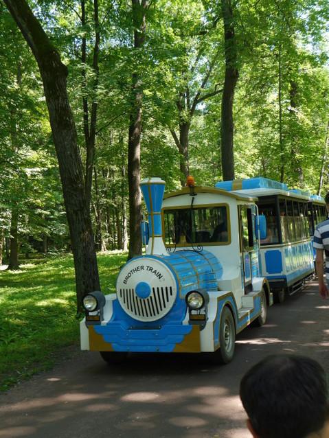 Экскурсионный паровозик для прогулки по парку Александрия