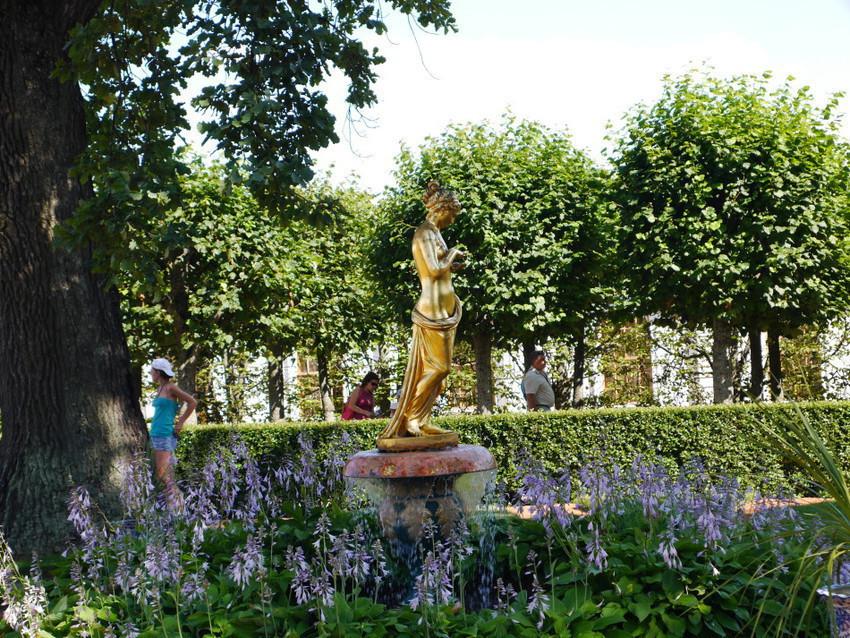 Парк около дворца Монплезир