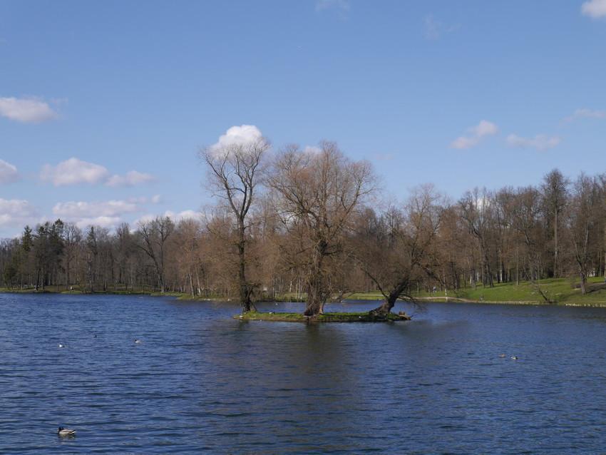 Озеро парка