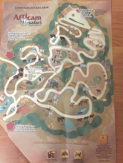 Карта зоопарка.