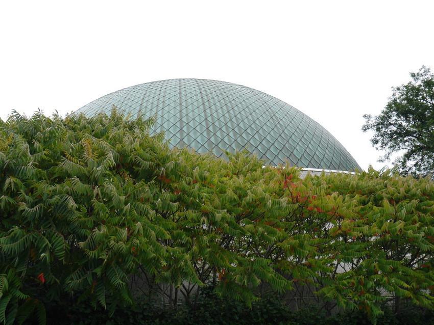 Купол планетария