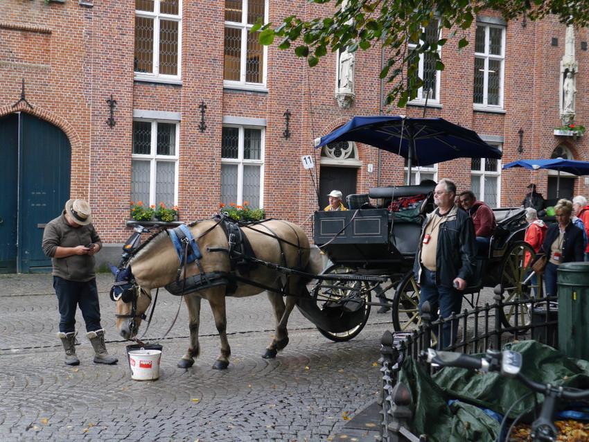 Конные экипажи в Брюгге