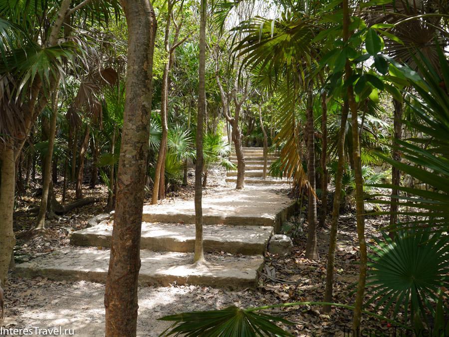 По тропе к пирамидам майя