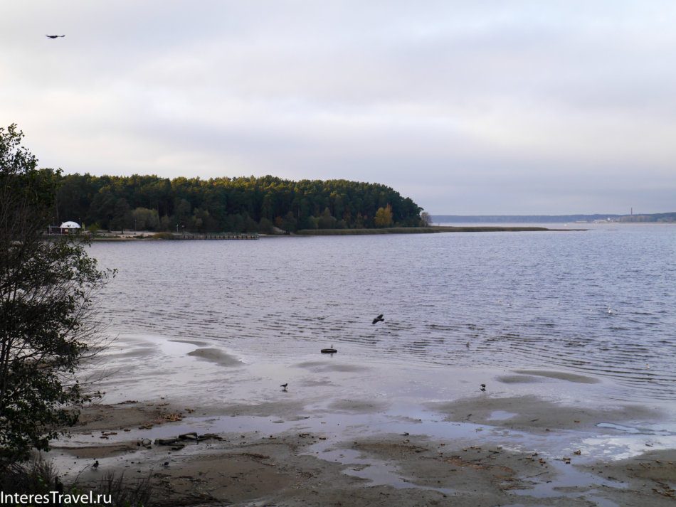 Вид на Балтийское море из зоопарка