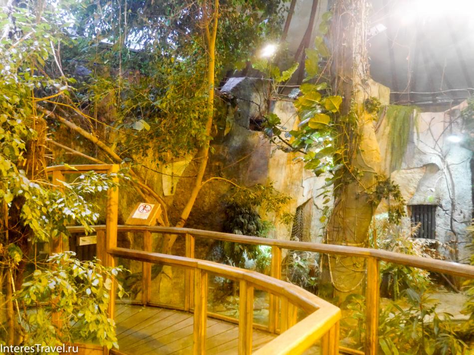 Павильон со земноводными в Рижском зоопарке