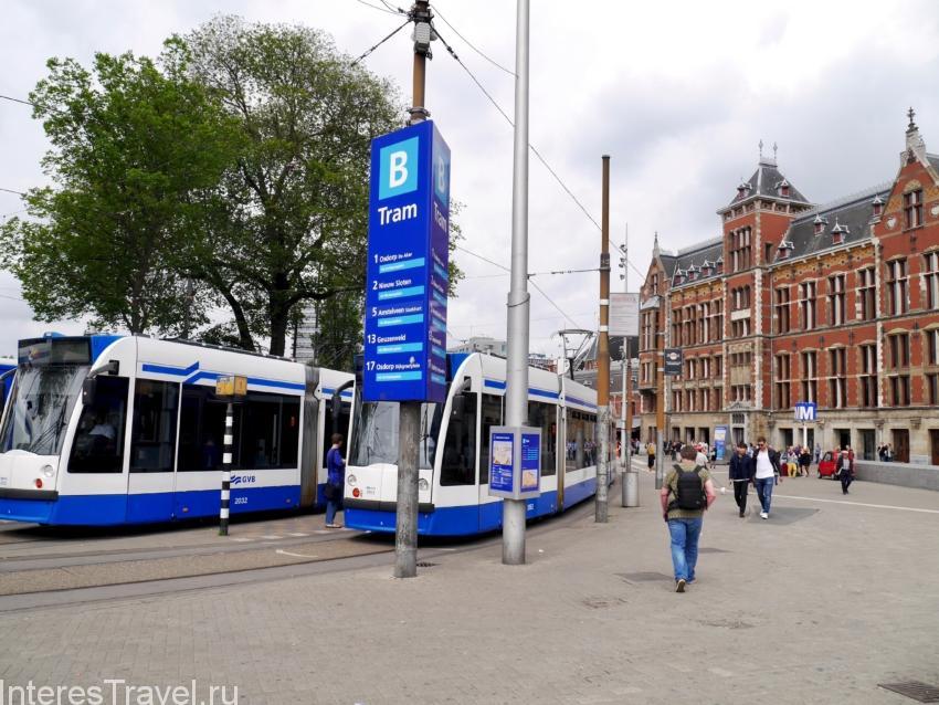 Местные трамваи
